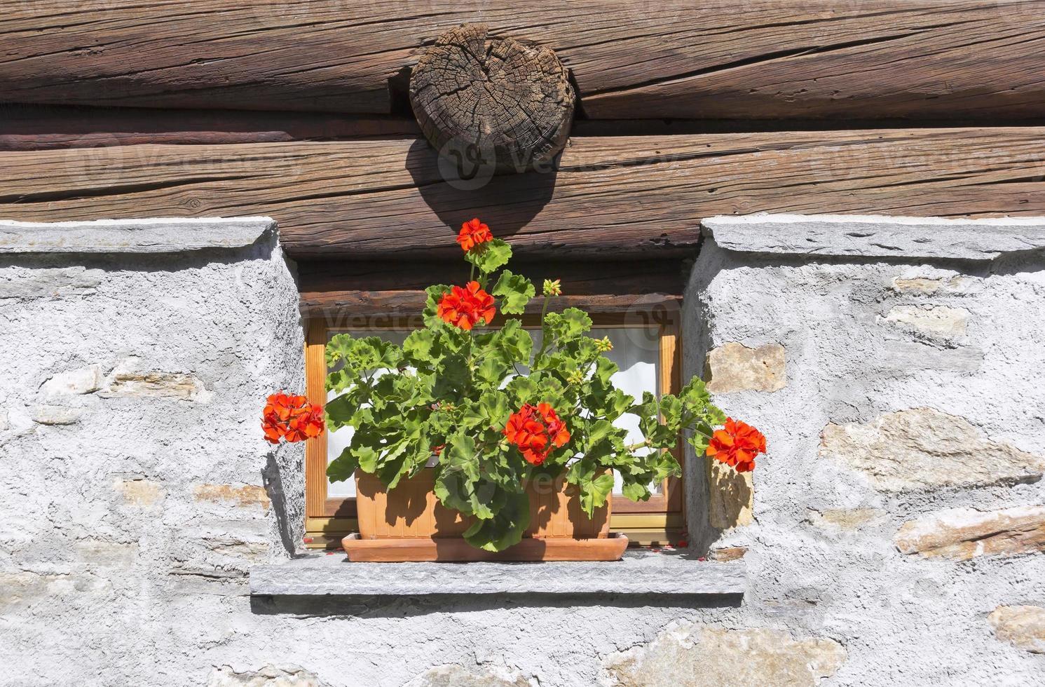 litet gammalt fönster foto