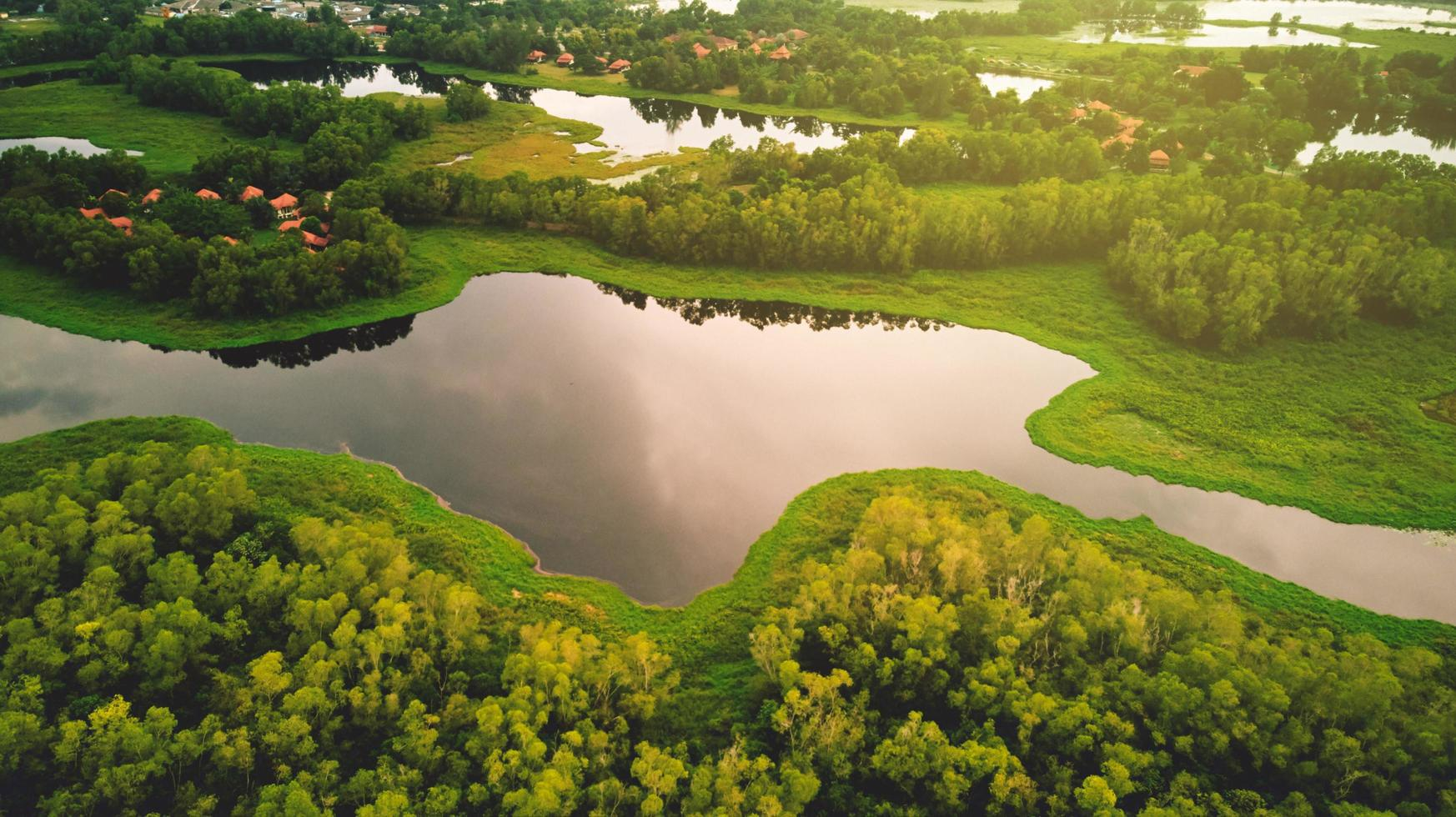 Flygfoto över sjön och träd foto