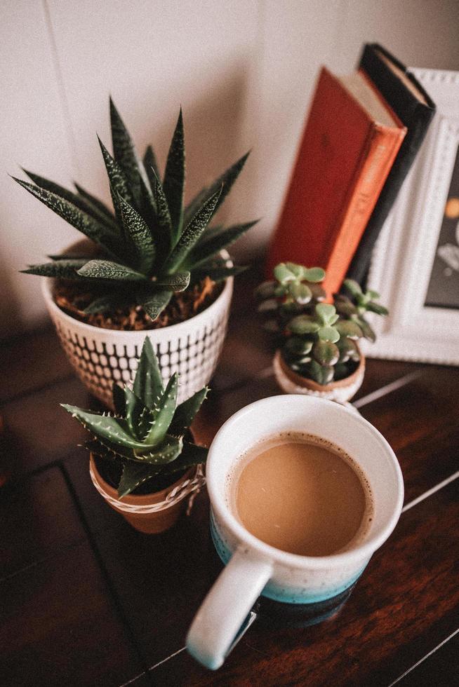 kaktus i keramiska krukor med kaffemugg foto