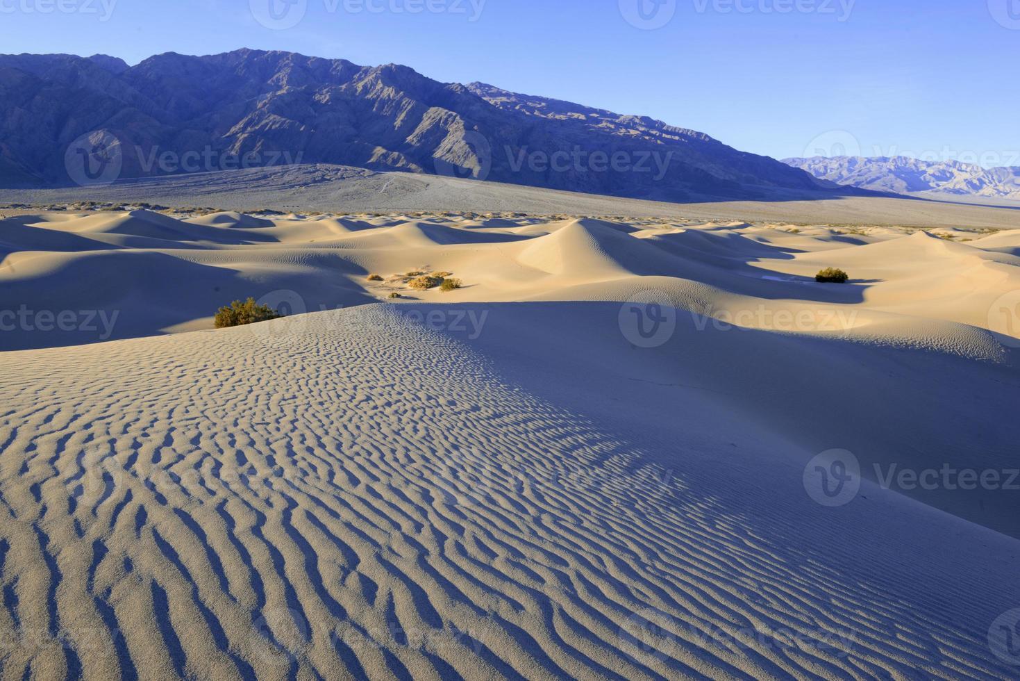 sanddyner och berg i ökenlandskap foto