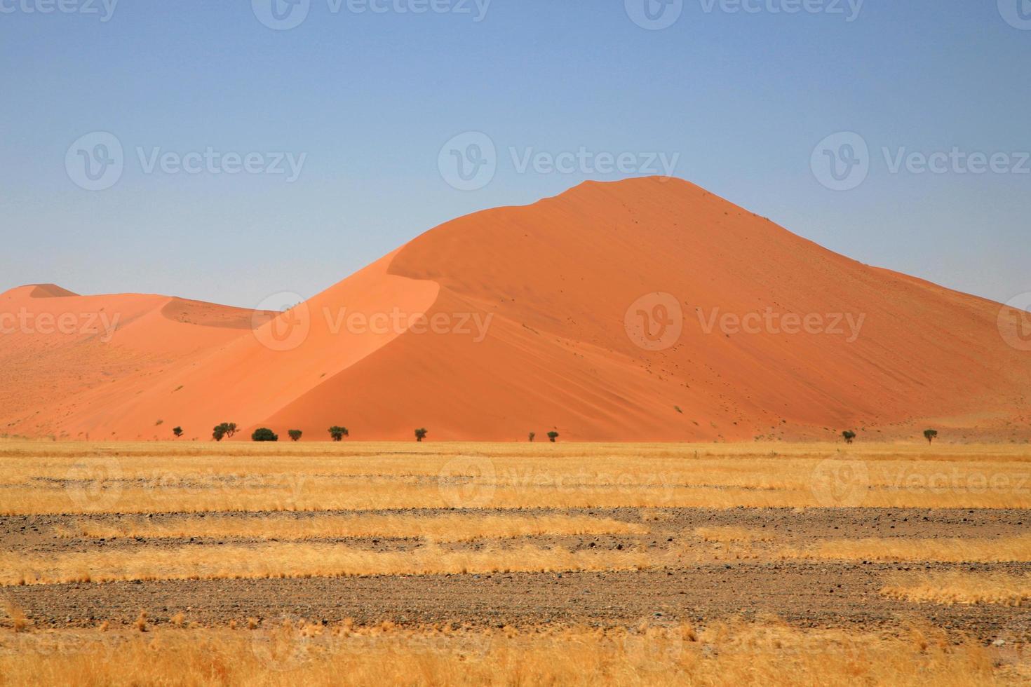 öknen av Sossusvlei i Namibia foto