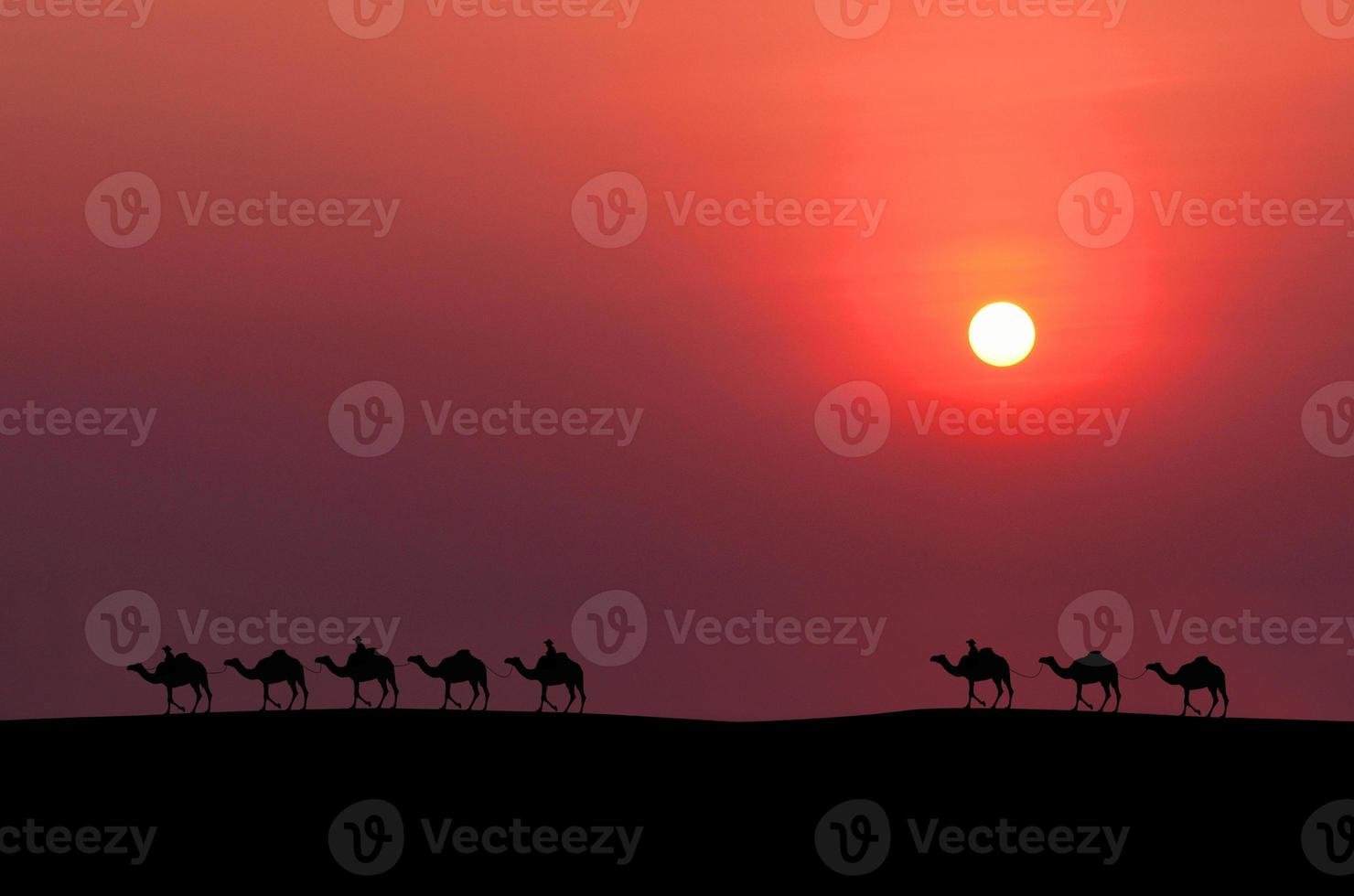 kamel husvagn foto