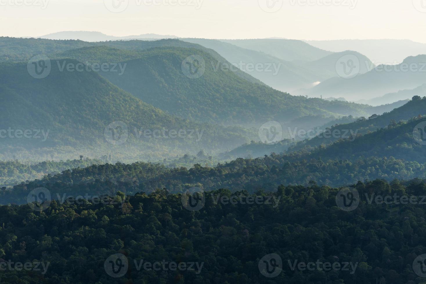 dimmigt berg skog dal foto