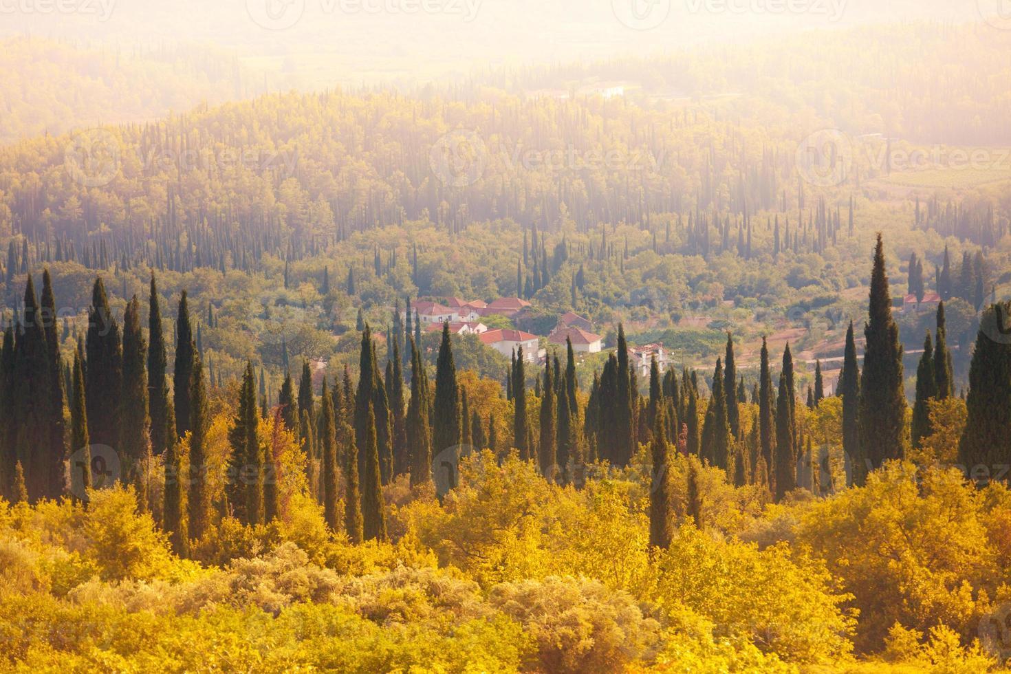 kroatisk skog och åkrar foto