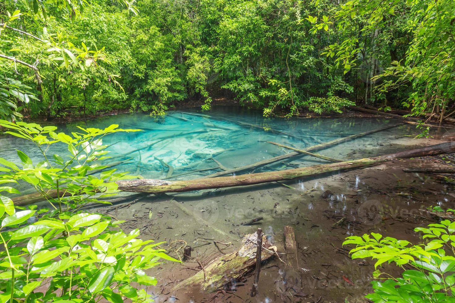 blå safirdamm det fantastiskt på Krabi, Thailand foto