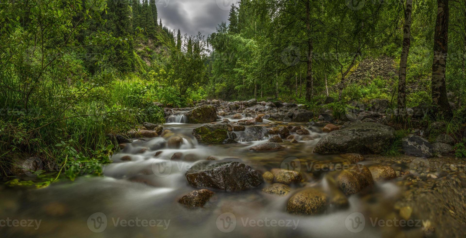 berg flod i skogen, panorama foto