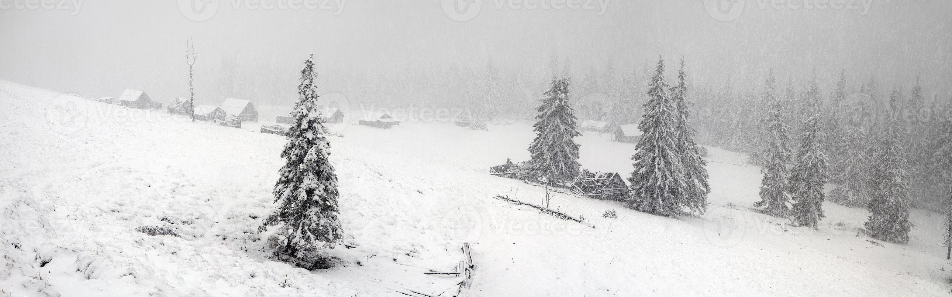 alpint är klimatet foto