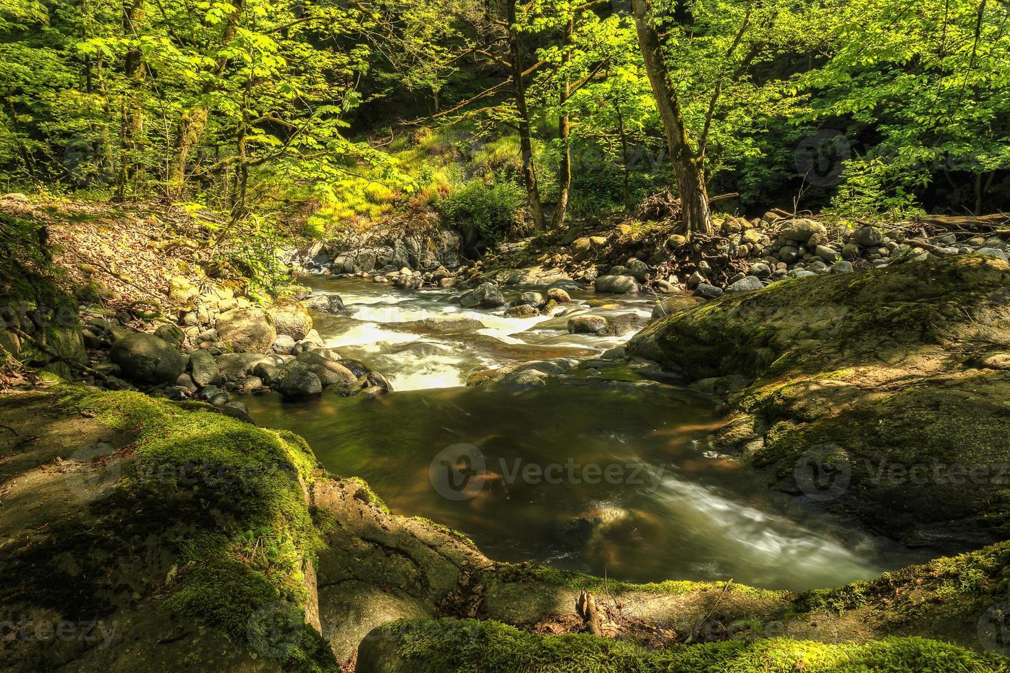 flod i hirkan nationalpark i lankaranska Azerbajdzjan foto