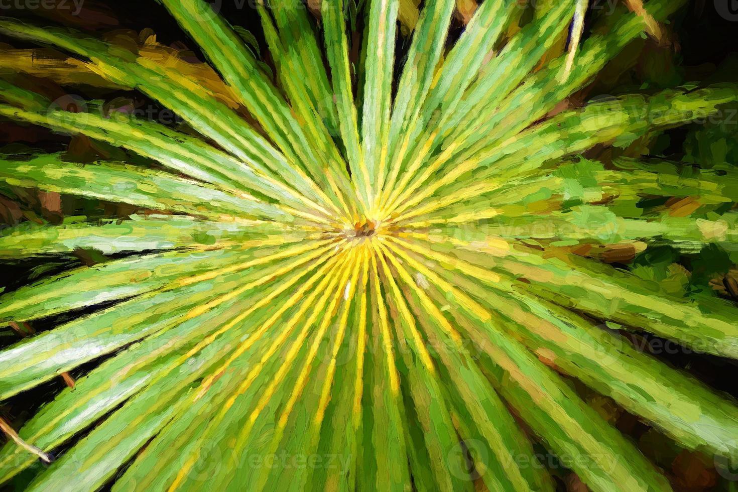 digital konst, abstrakt tropisk natur: exotiskt grönt palmblad foto