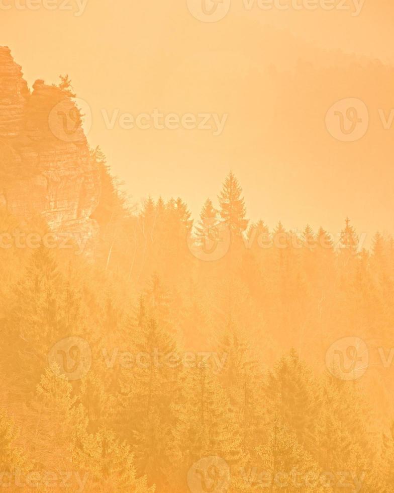 drömmande dimmigt landskap, mild orange dimmig soluppgång foto