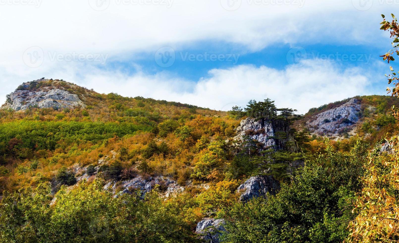 bergstopp. foto