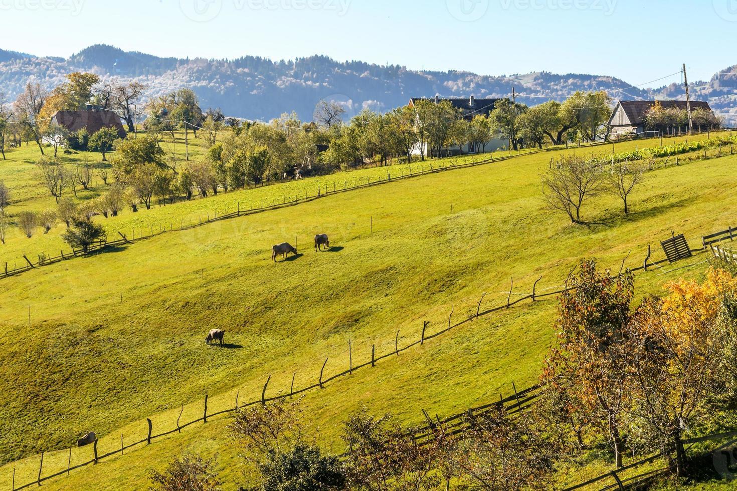 landsbygdens landskap i en rumänsk by foto