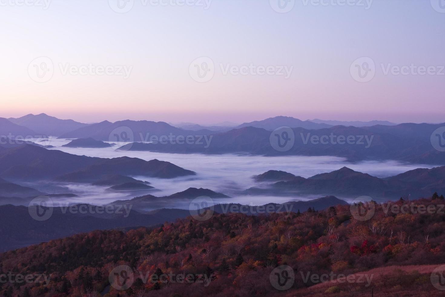 topp höljd i dimma och moln foto