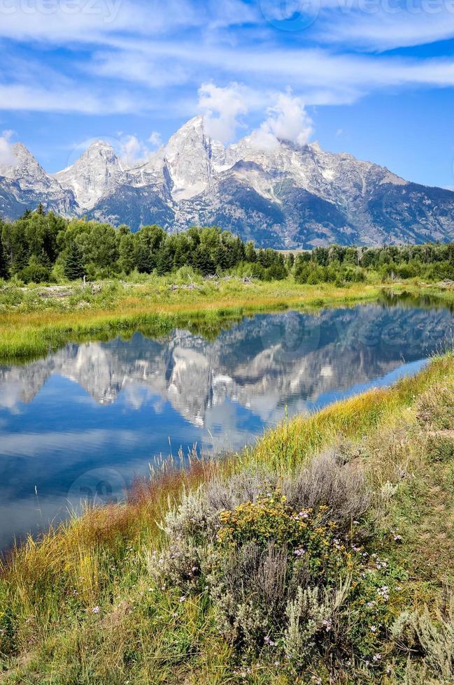 utsikt över grand teton berg med vattenreflektion och blommor foto