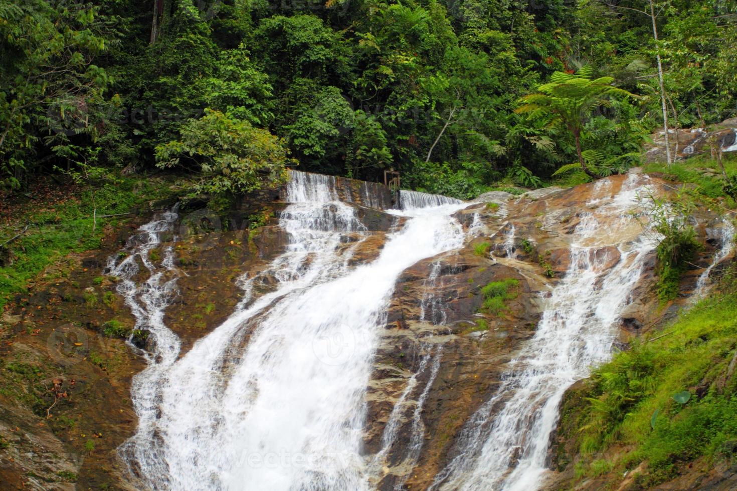 vattenfall vid Cameron Highlands, Malaysia foto