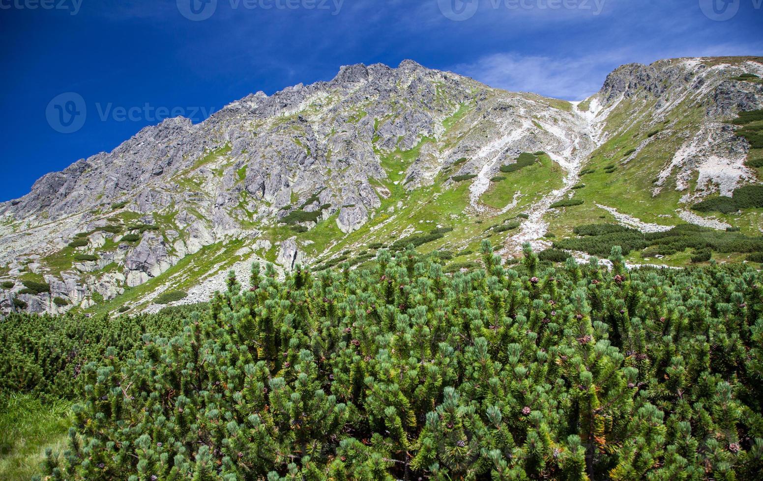 kulle - predne solisko - i höga tatras, slovakien foto