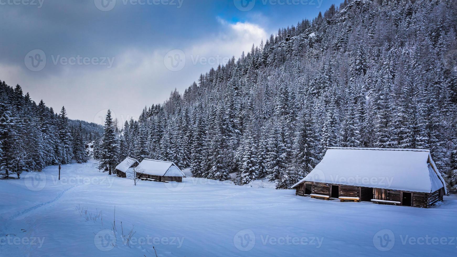 gamla trästugor i vinterberg foto