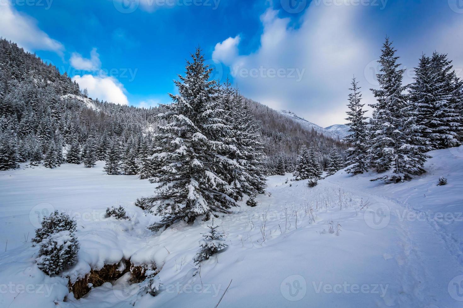 snöväg i bergsdalen foto