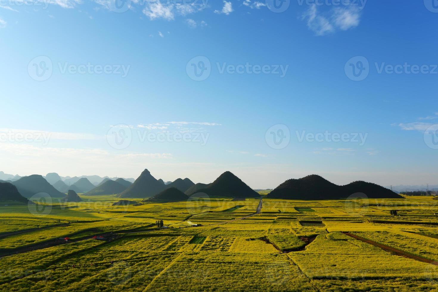 rapsfält med berg, porslin foto