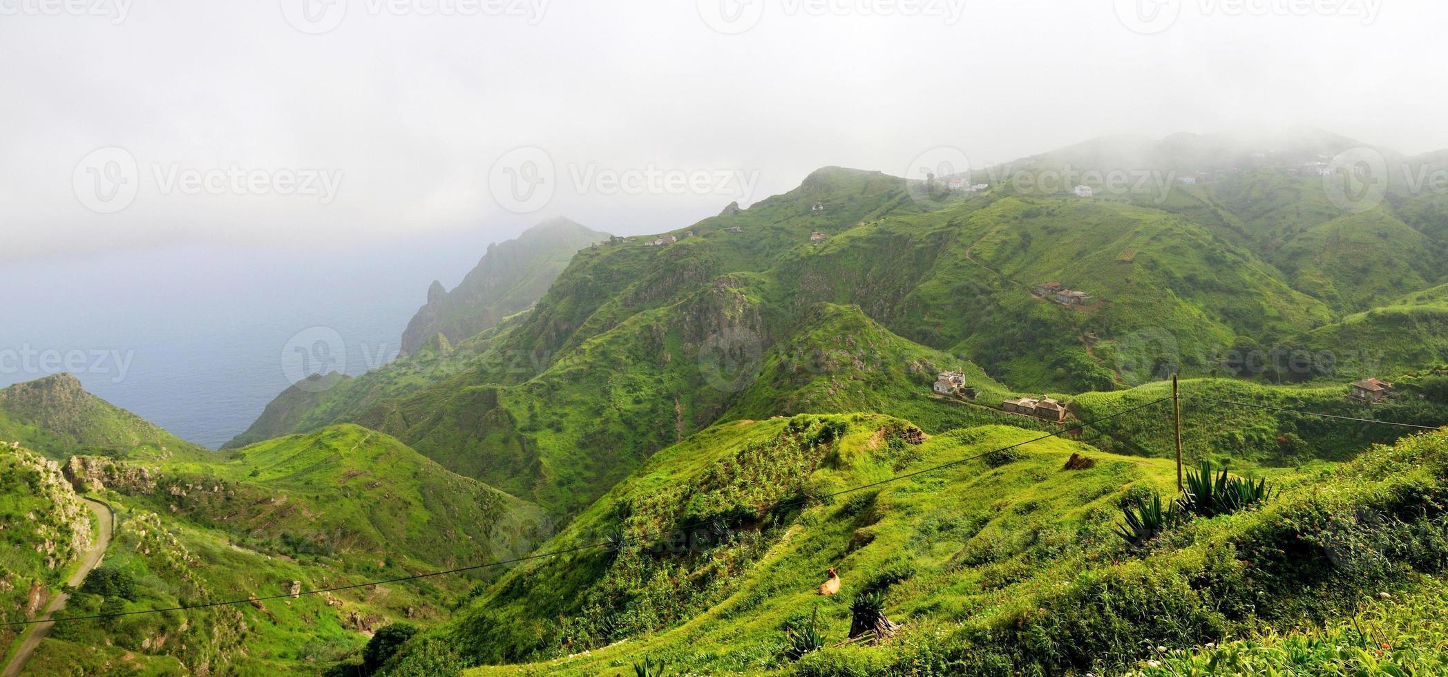 hem, jordbruksmark och boskap på bergstoppen foto