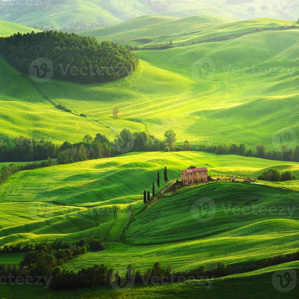 gård på grönt fält i Toscana foto