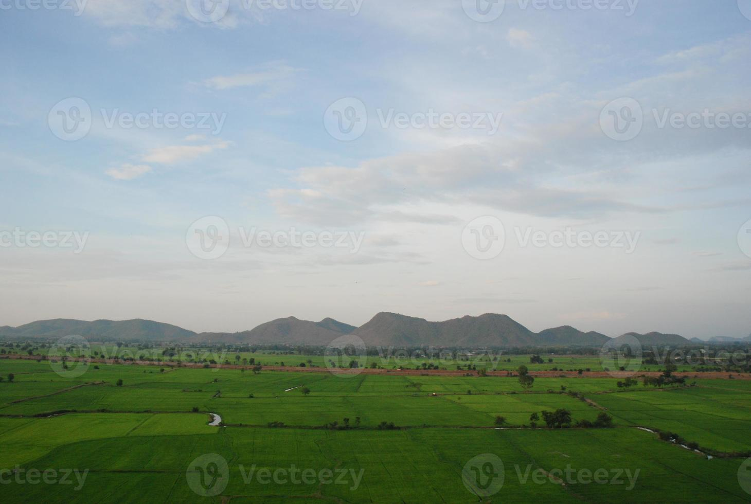 grönt ris gård berg och himmel foto
