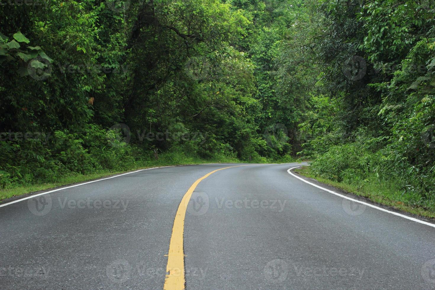 khao yai nationalpark foto