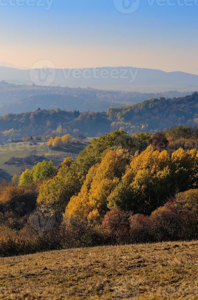 höstens natur foto