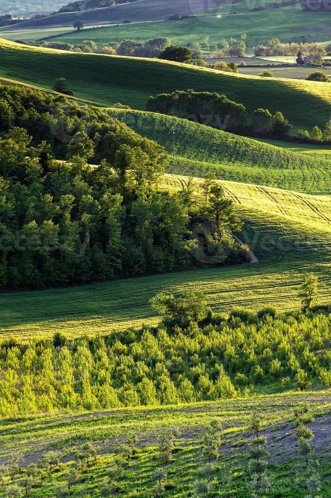 Toscana - Italien foto