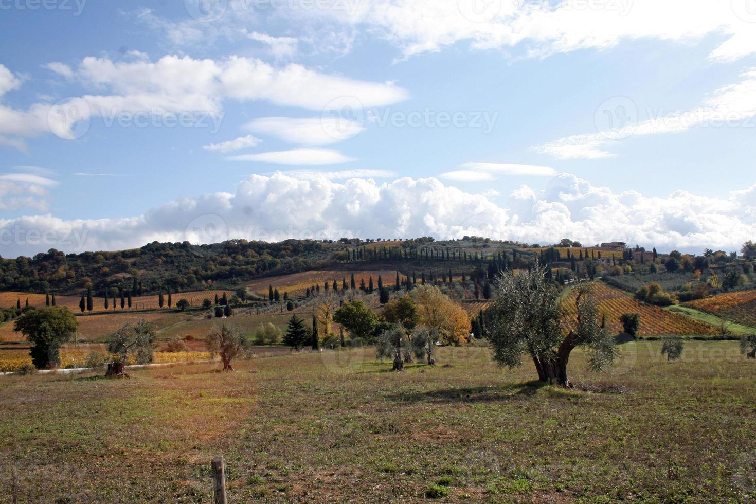 tuscany foto