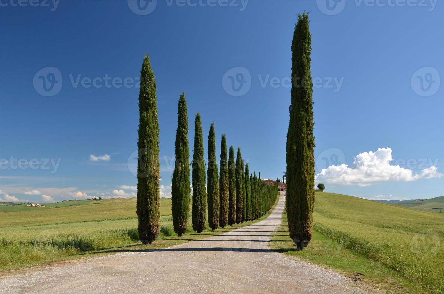 Toscana, Italien foto
