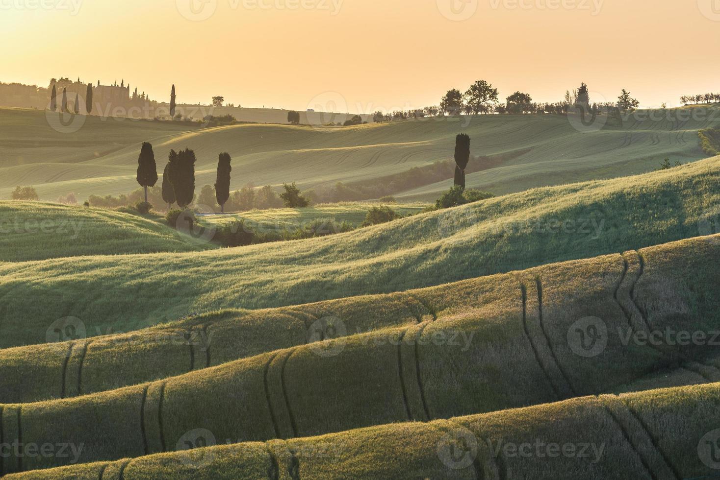 solnedgång på sommarfält i Toscana foto