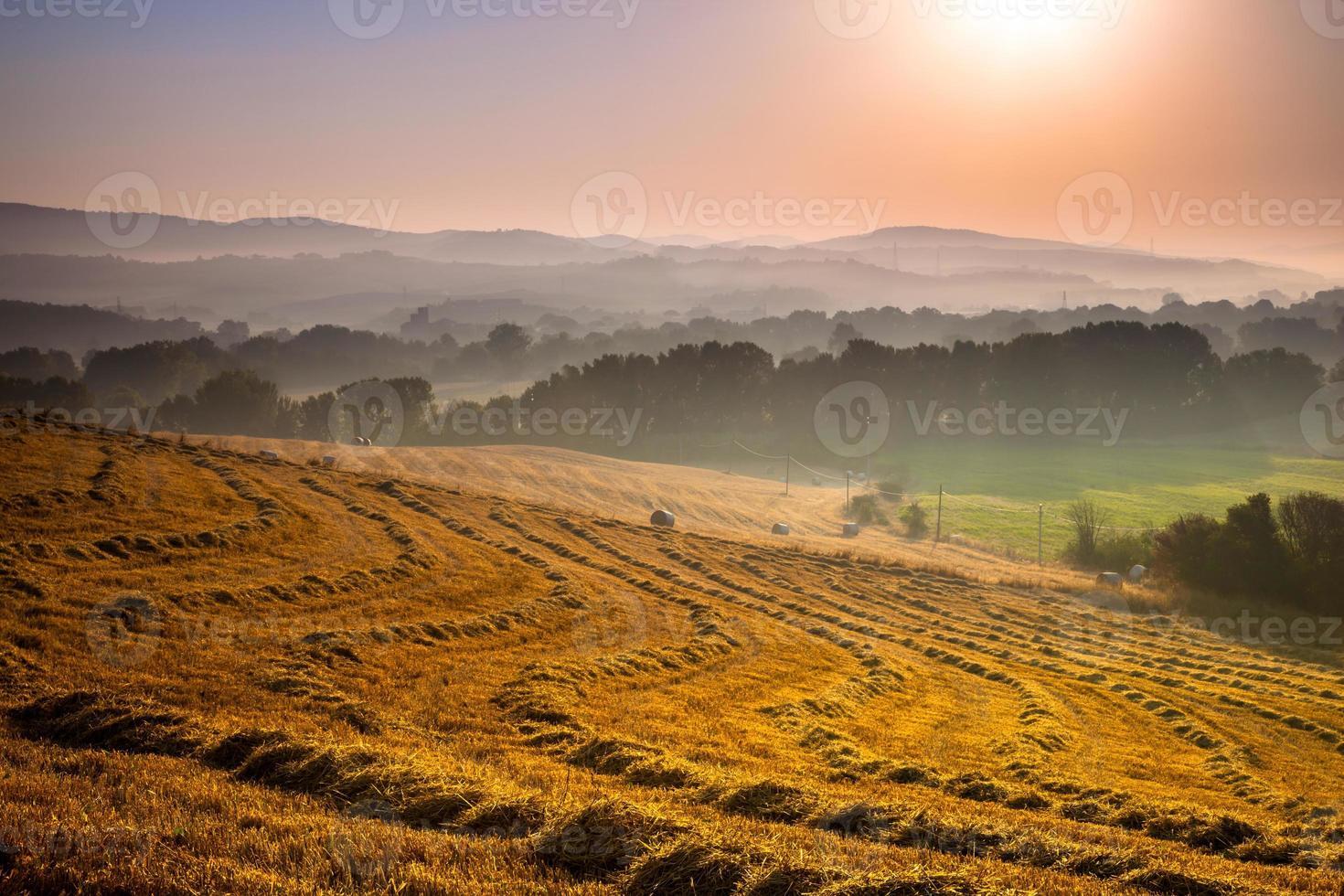 toskansk landsbygd i gryningen med dis foto