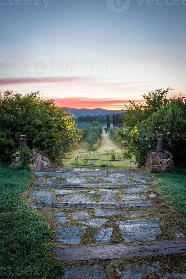 toskanska landskap foto