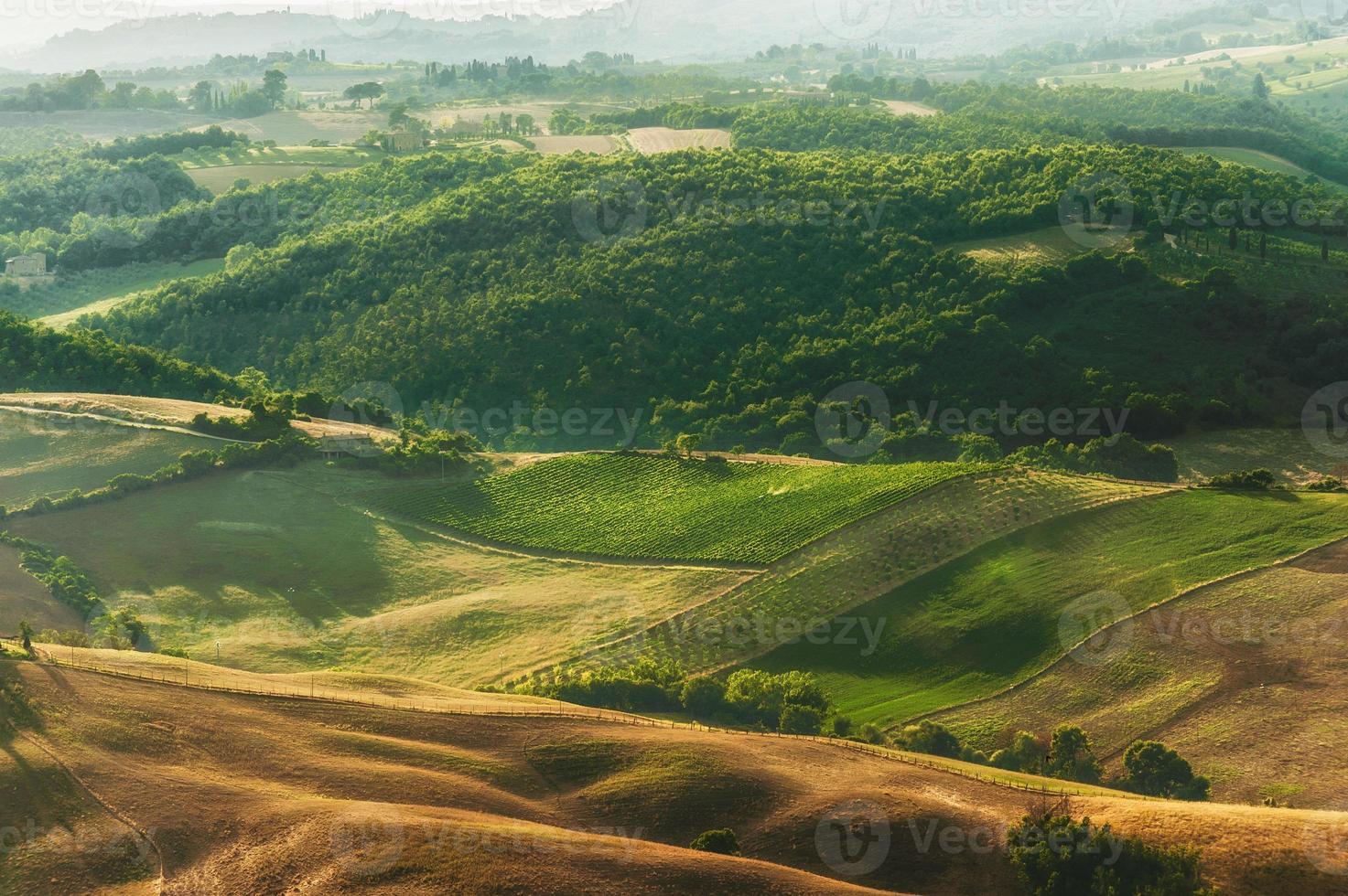 landsbygdens landskap av gröna toskanska, Italien foto