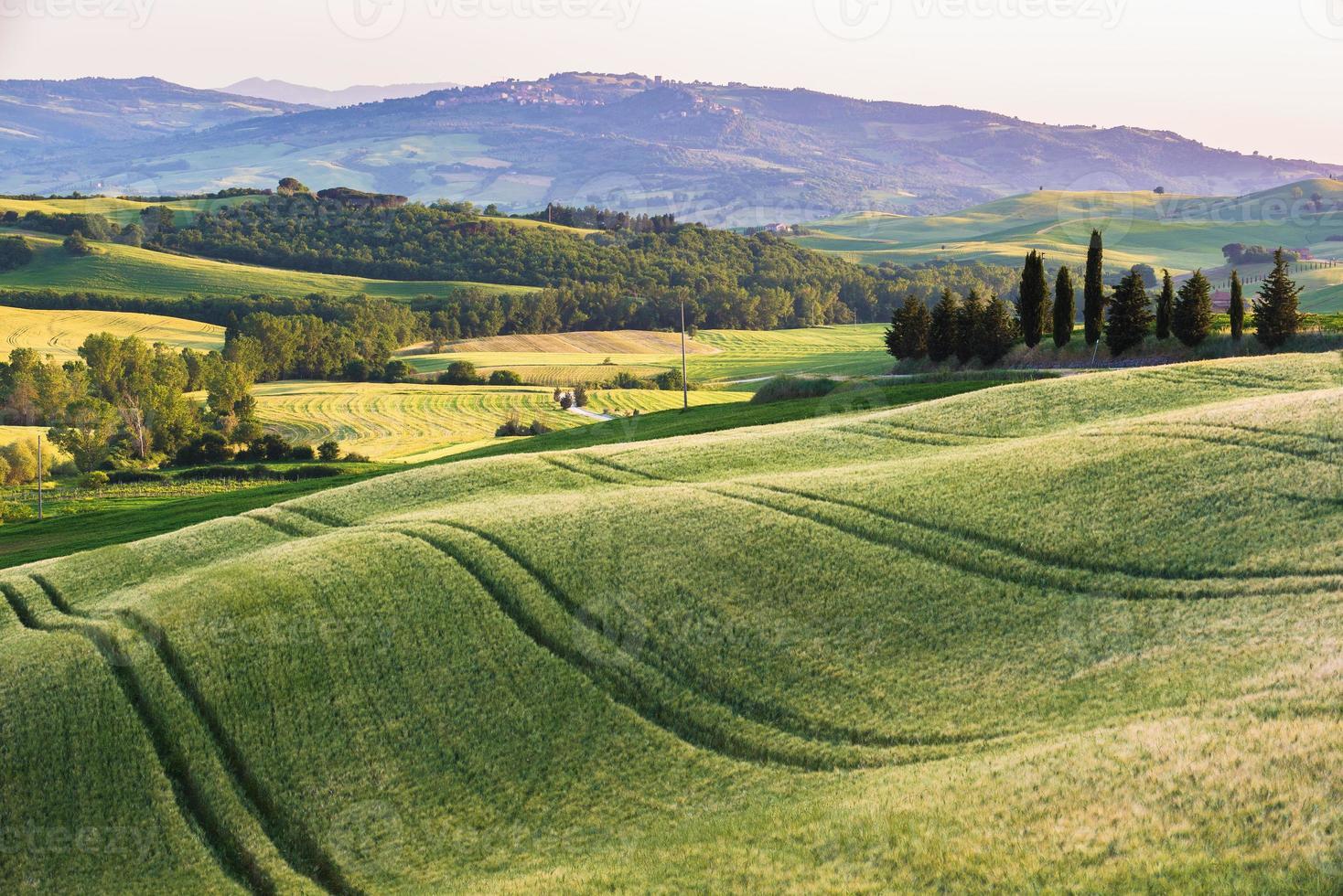 lugnt sommarfält i Toscana foto