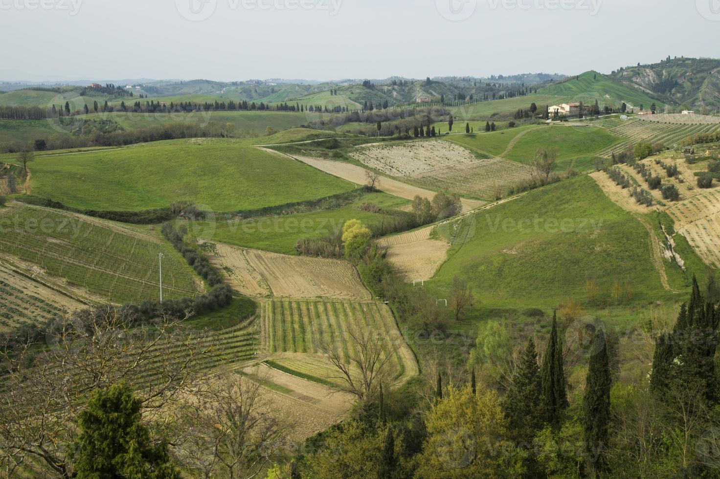 panorama tuscany hill, certaldo, florence foto