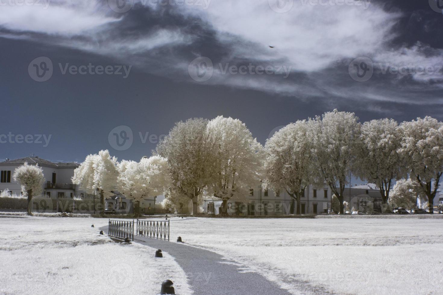 lucca infraröd foto