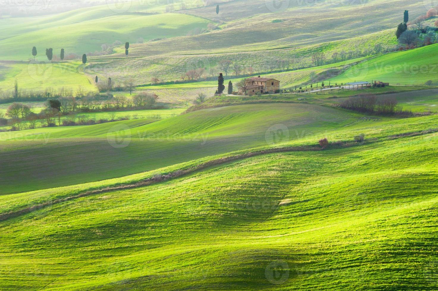 atmosfär grön vår i ett landskap i Toscana, Italien foto
