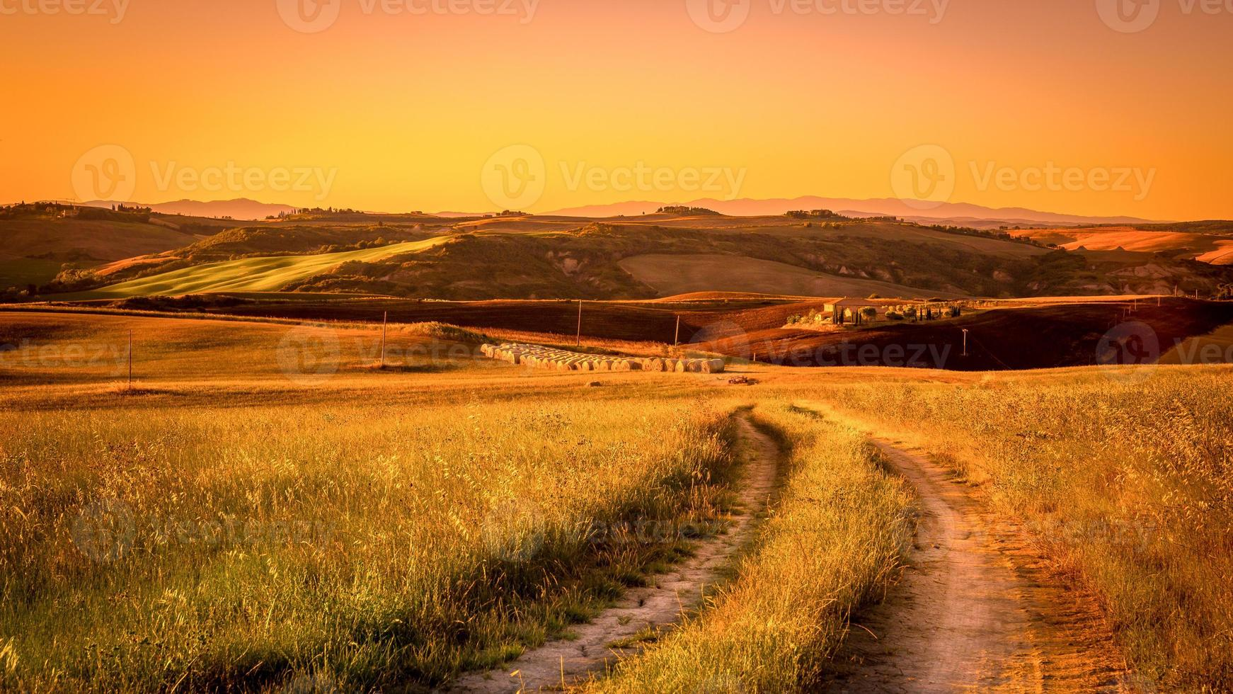 toskansk landsväg foto