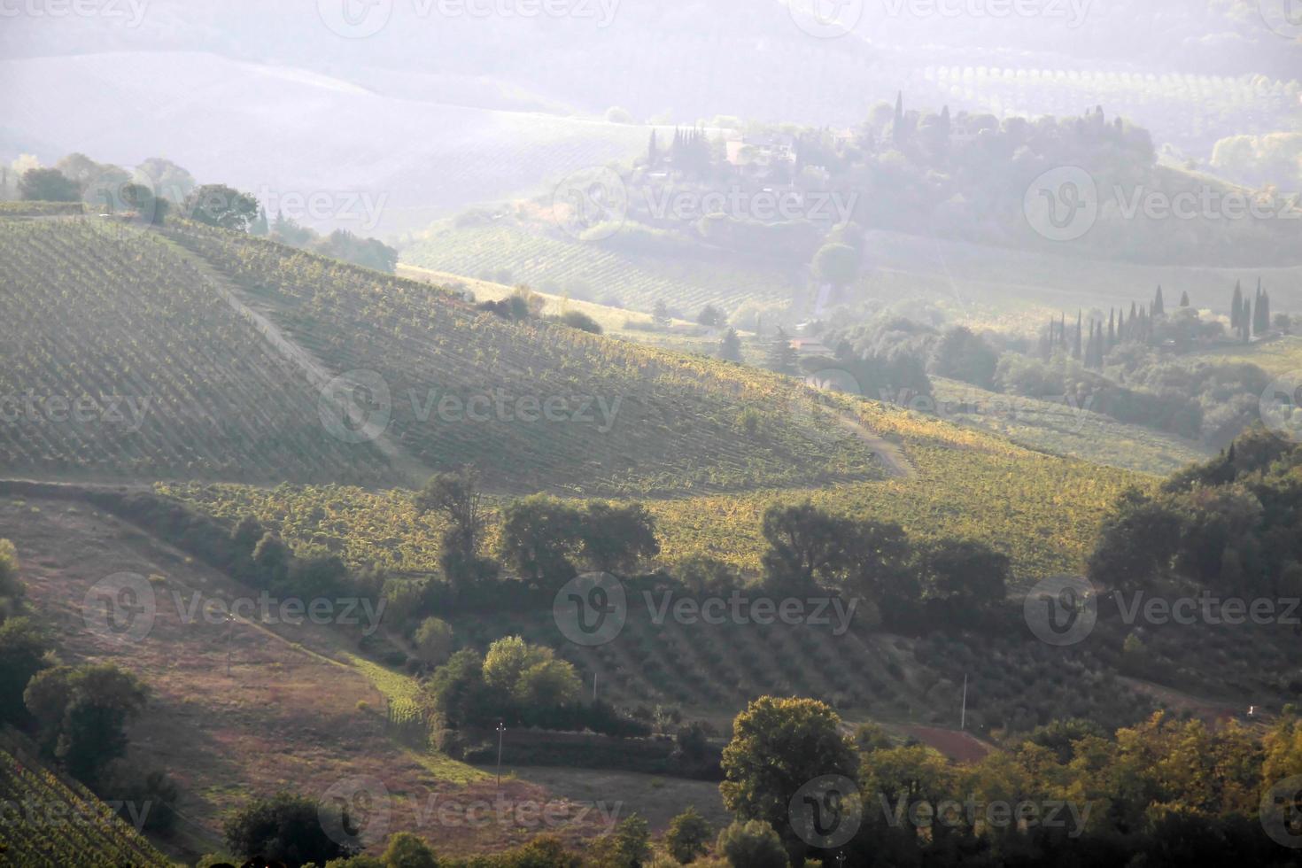 toskanska kullar nära San Gimignano foto