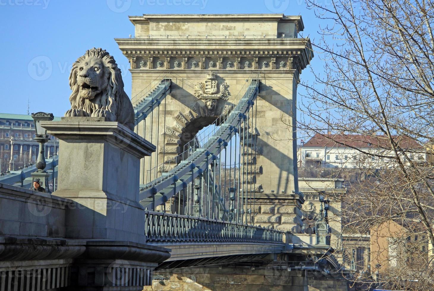 utsikt över szechenyi kedjebron och buda foto