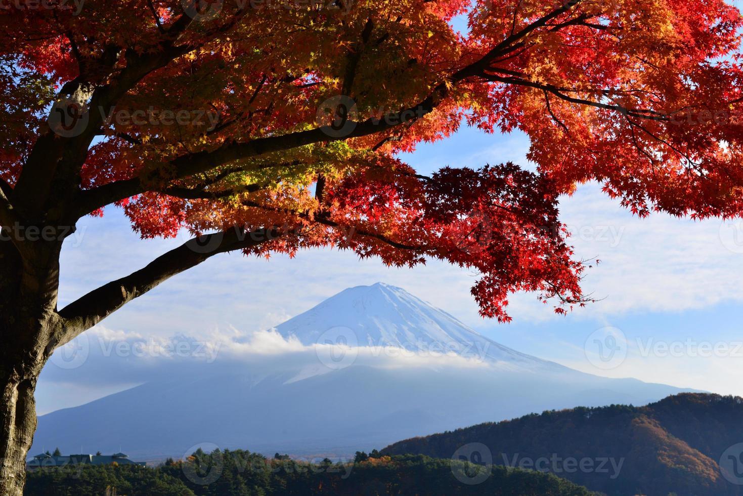 mt fuji och höstfärger foto