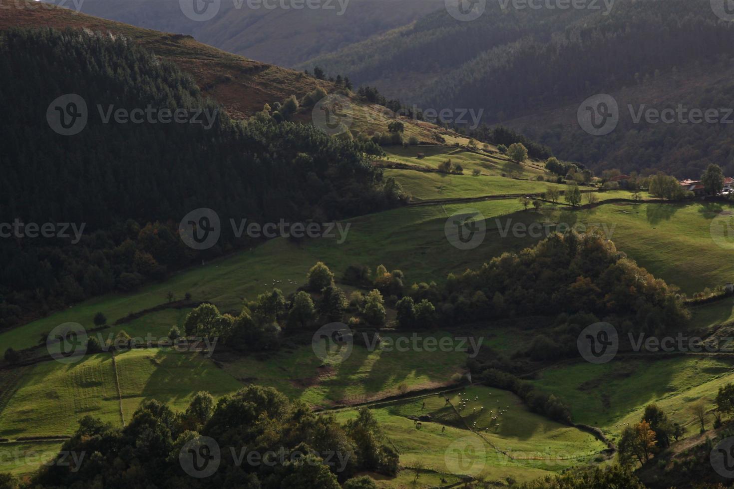 valle verde luminoso foto