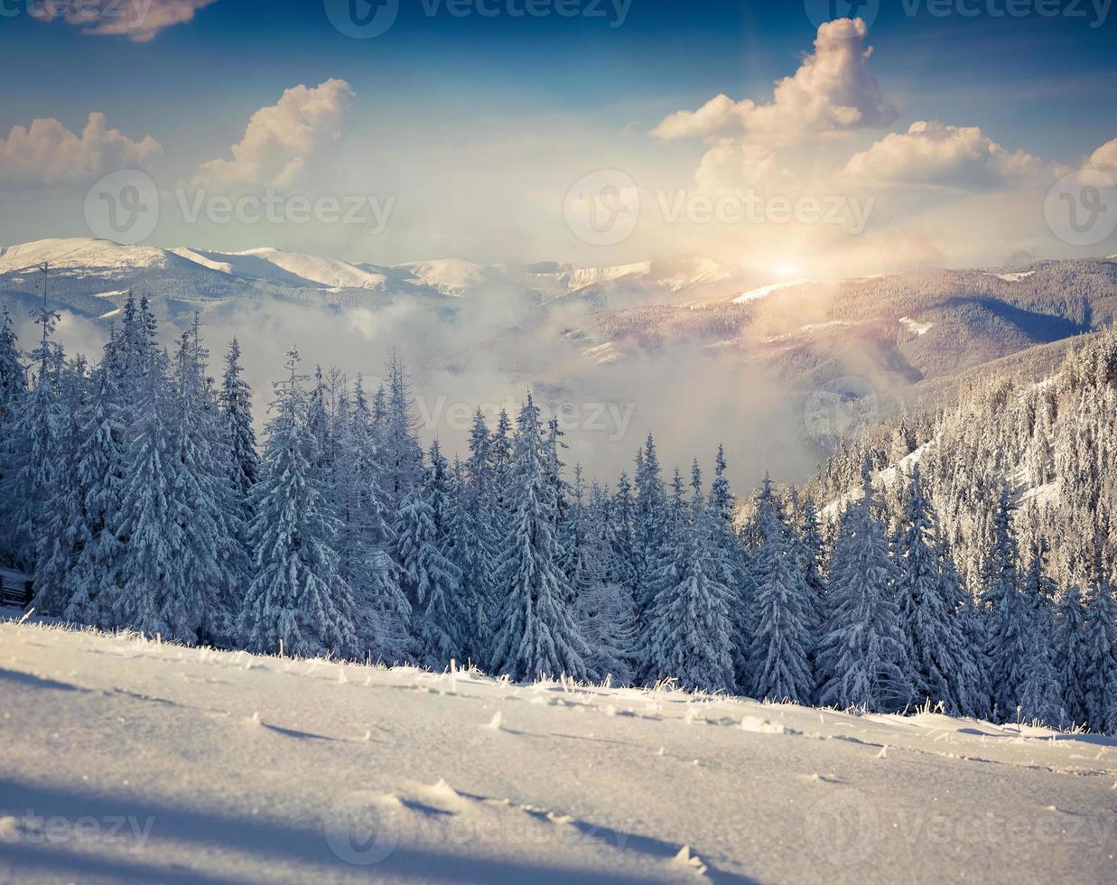 vacker vintermorgon i bergen foto