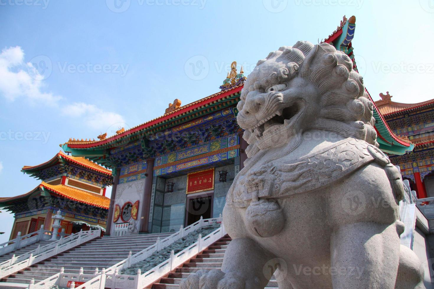 lejon i templet foto