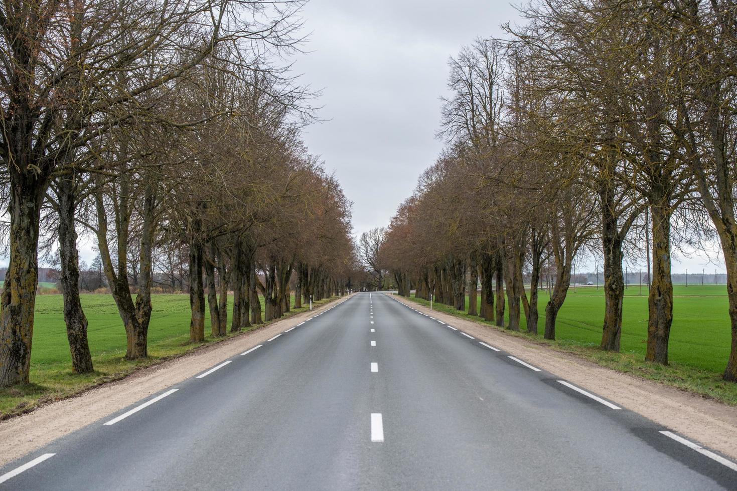 en väg genom landsbygden foto
