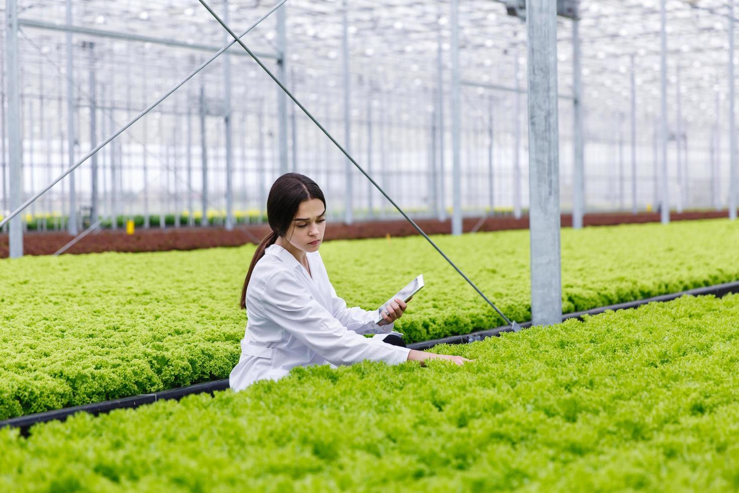 kvinnlig forskare som studerar växter i det gröna huset foto
