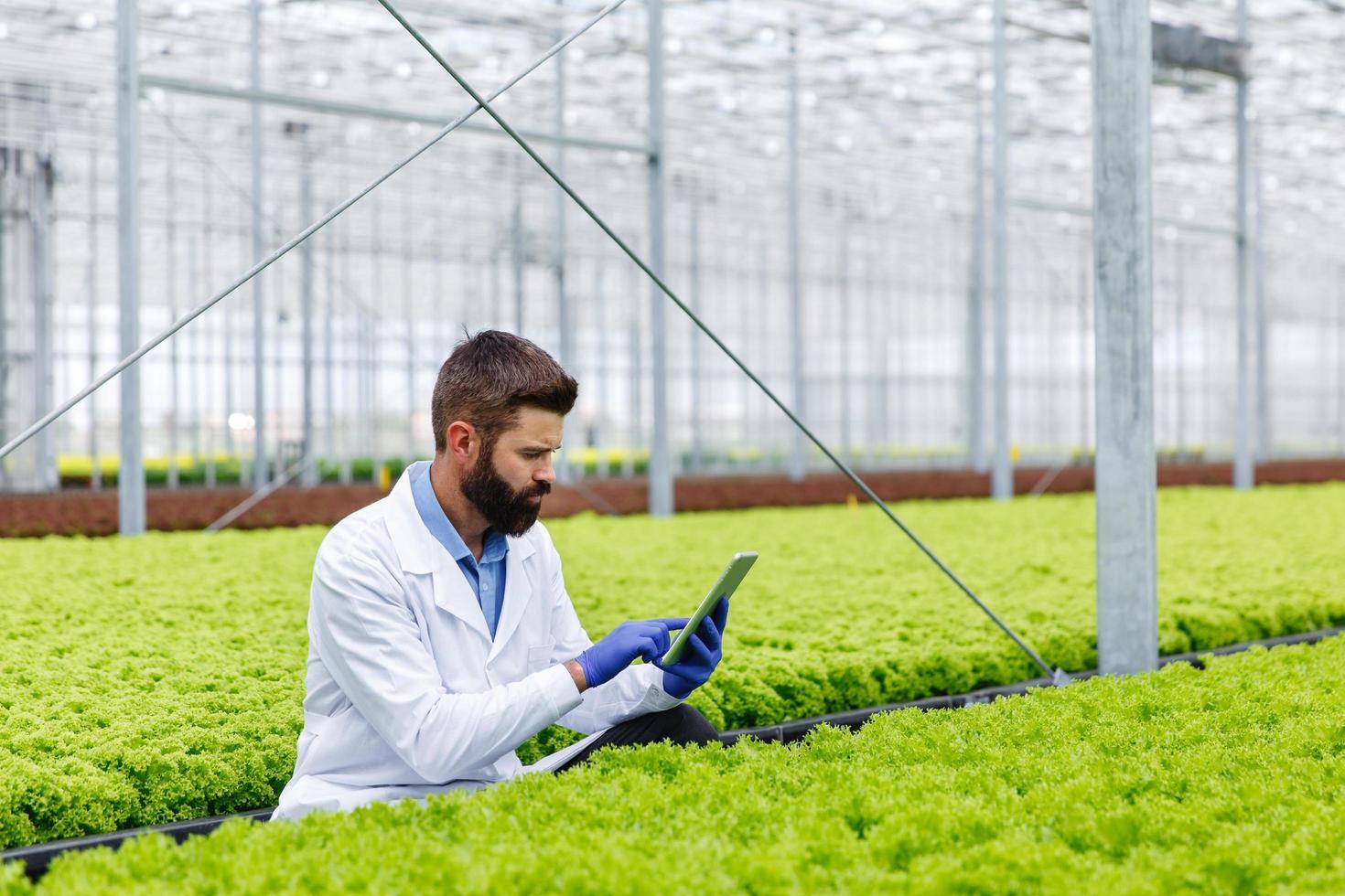manlig forskare som studerar växter foto