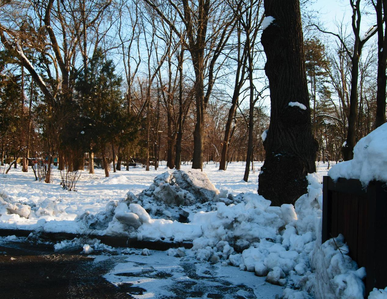 parkera över vintern foto